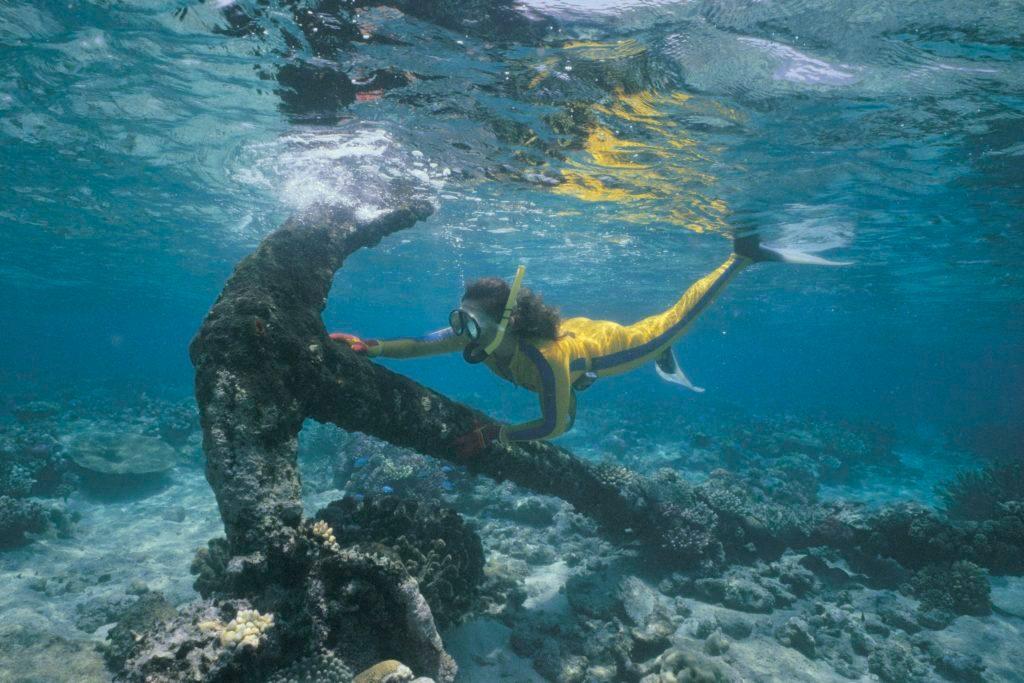 Scuba diver examining anchor
