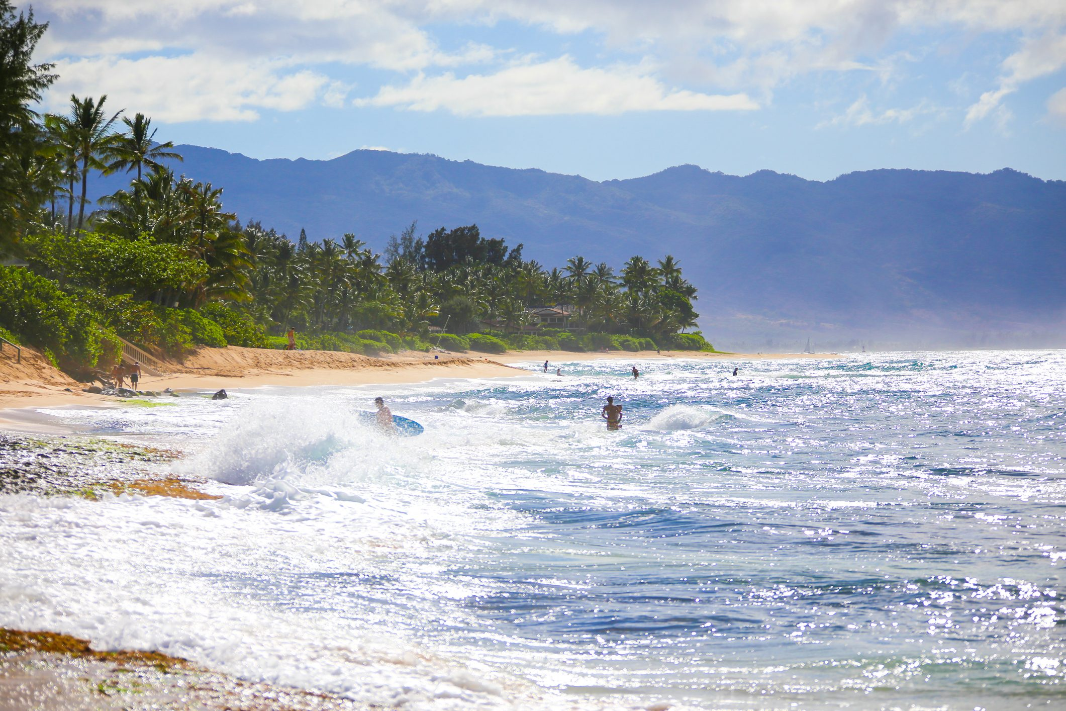 Oahu the vibrant island