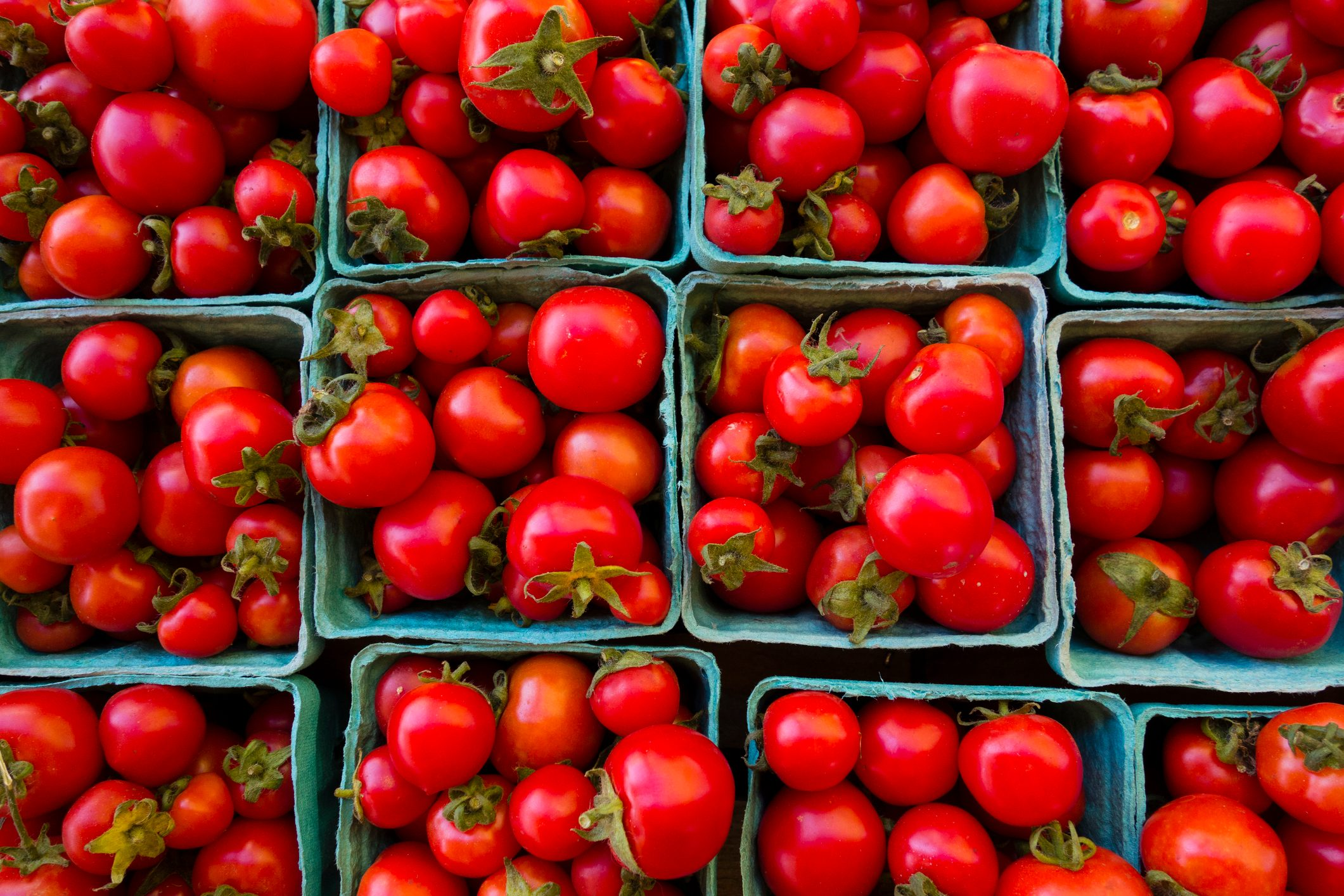 Containers of tomatoes