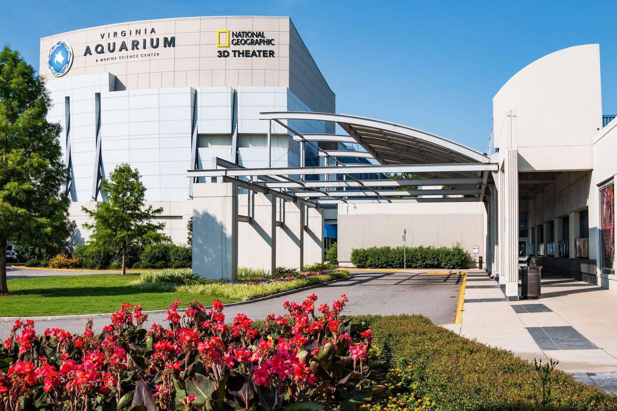 Virginia Aquarium & Marine Science Center With Red Flowers in Foreground