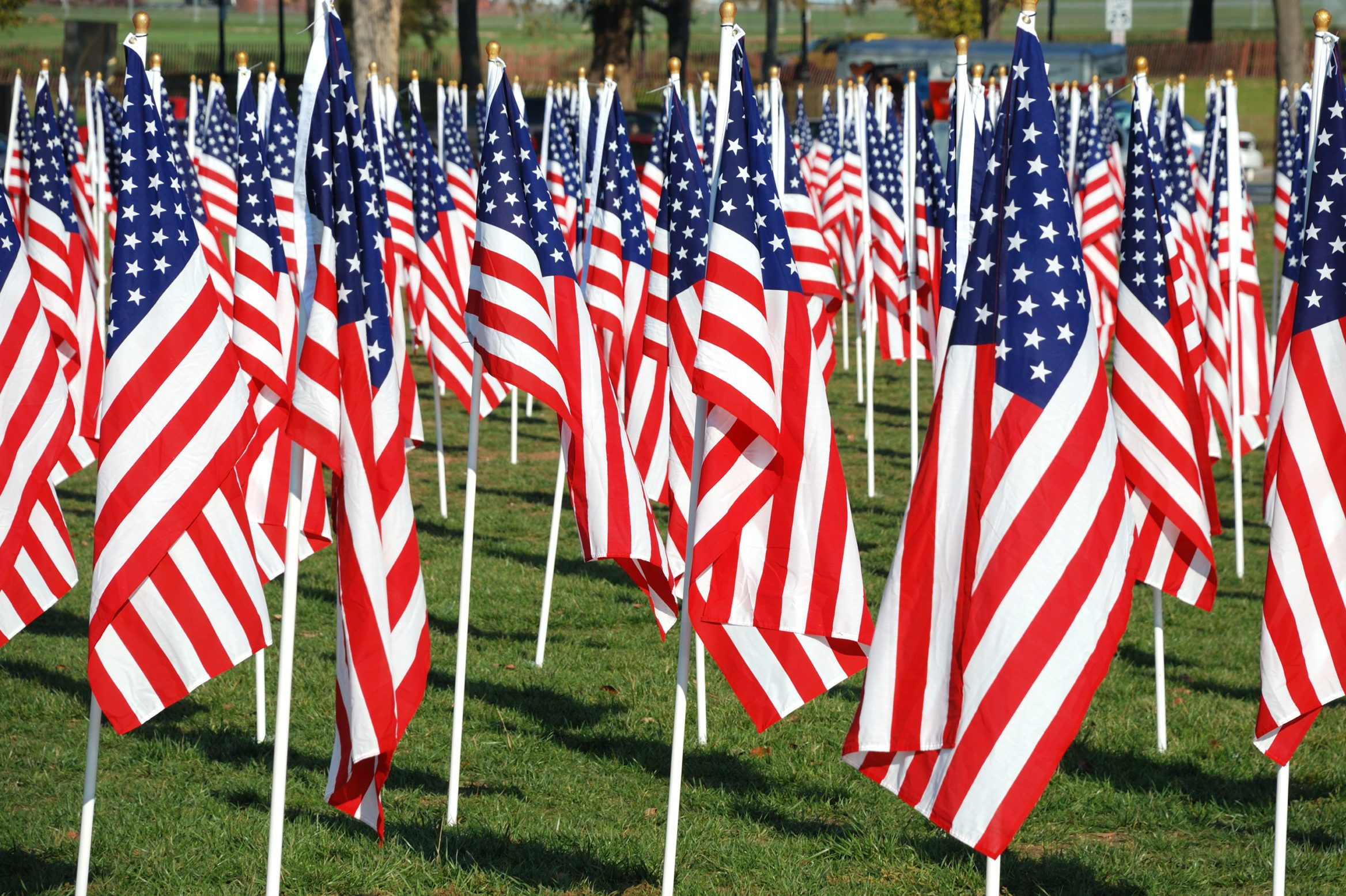 Field of American flags.