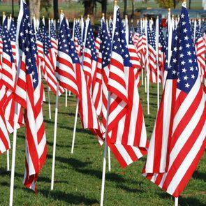 Field of American flags.