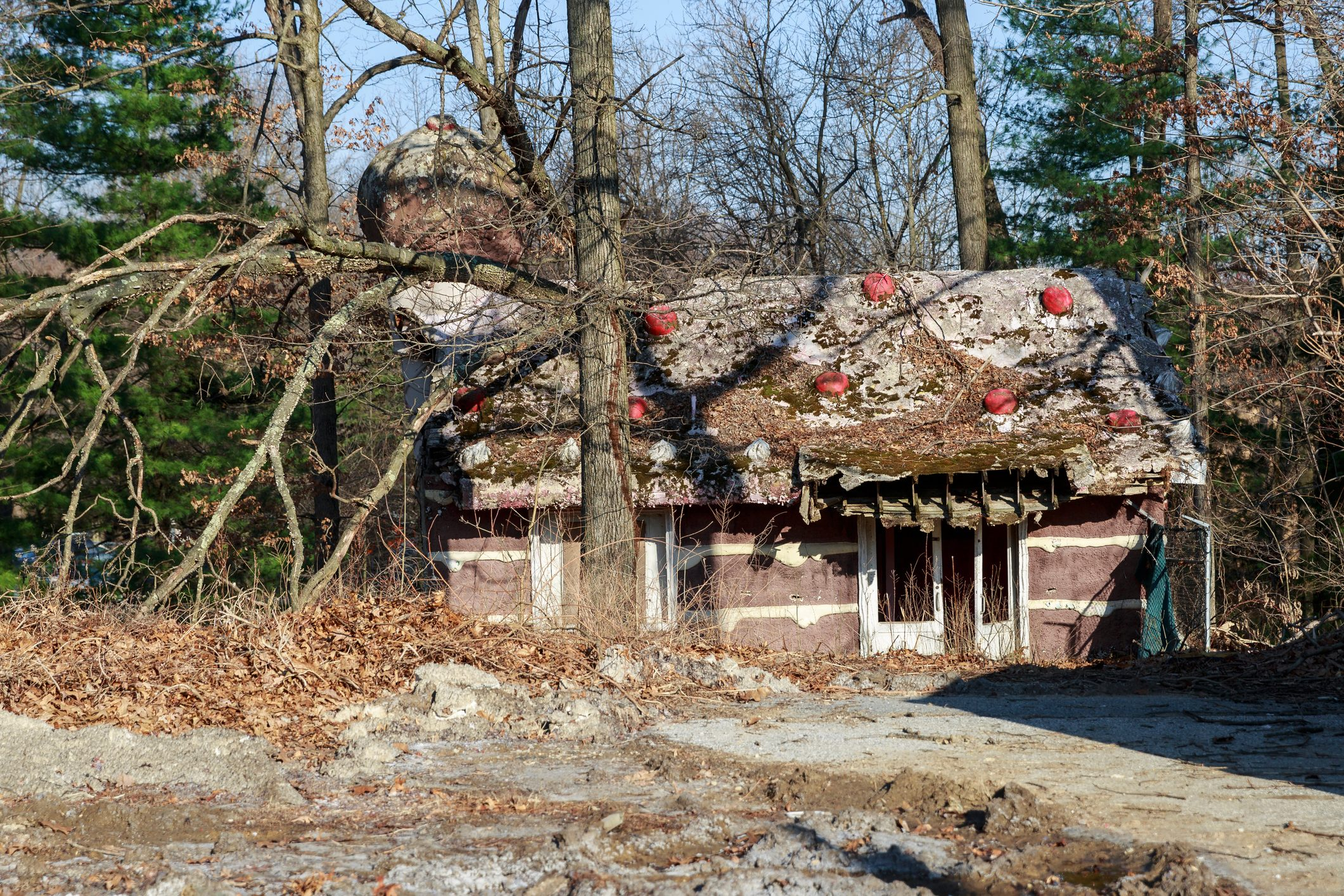 Enchanted Forest Abandoned Amusement Park Ice Cream Shop