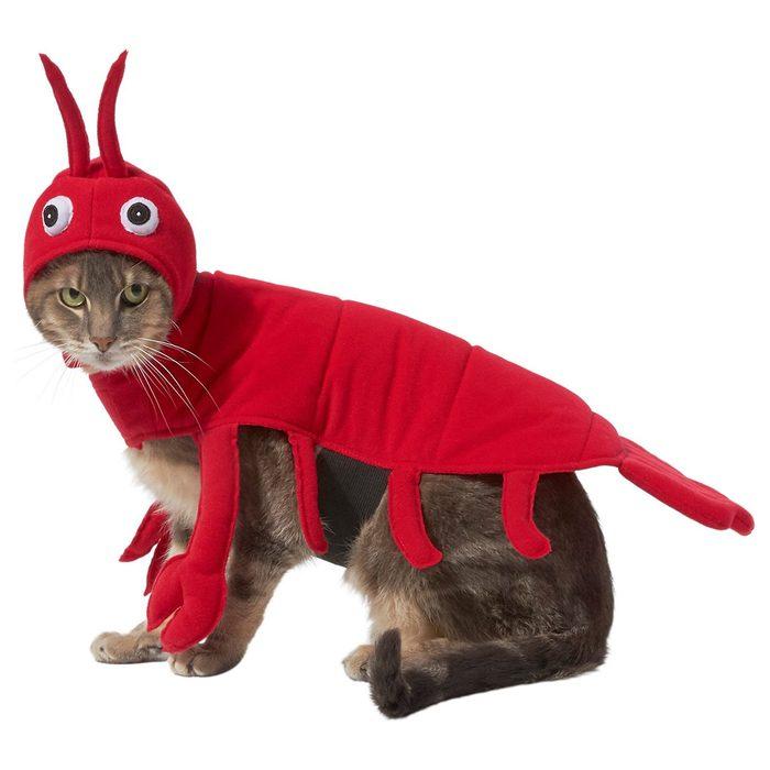 Lobster Cat Costume