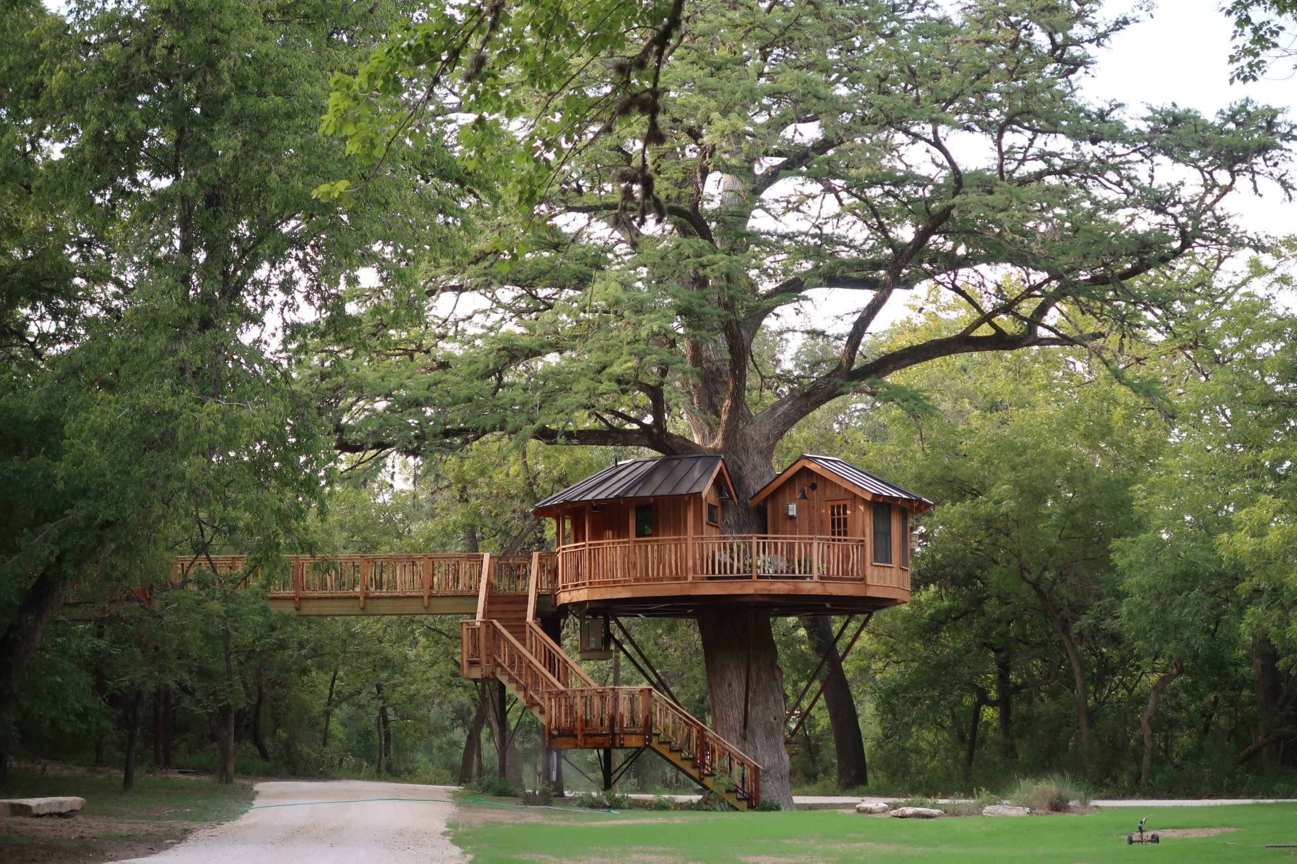 Treehouse Utopia