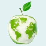 Answers to All of Your Questions About Eating Eco-Friendly
