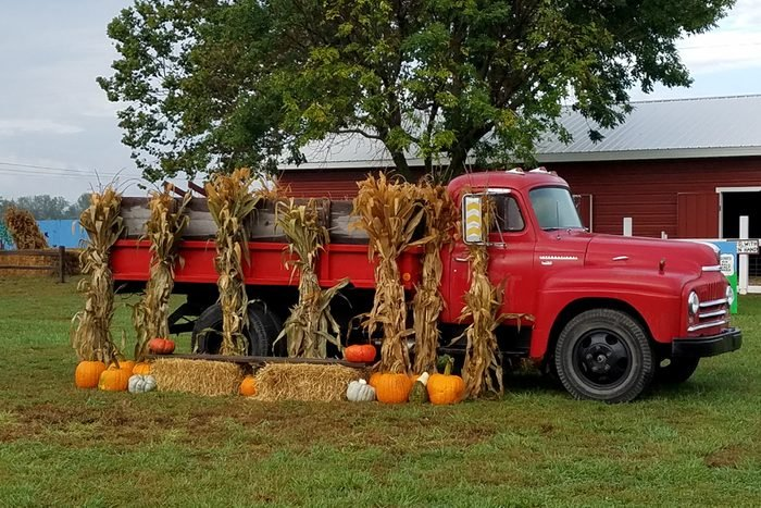 Carolyns Country Cousins Pumpkin Patch In Liberty Missouri