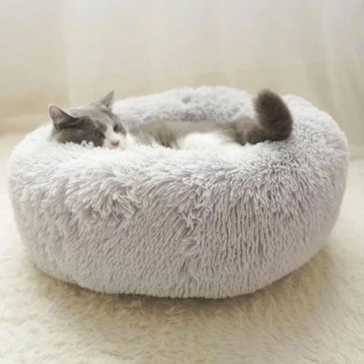 cat bed for shy cats