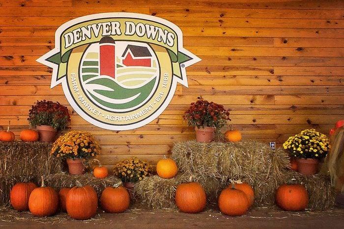 Denver Downs Farm In Anderson South Carolina