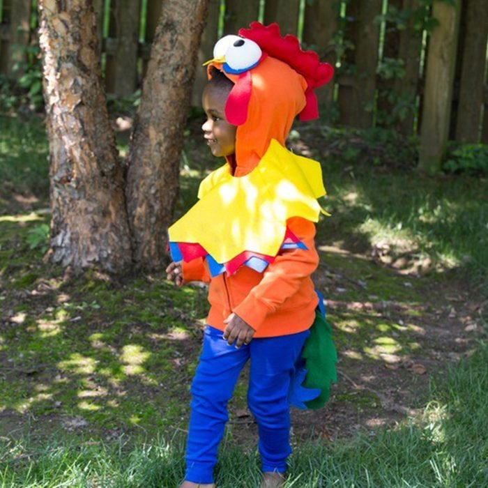 Diy Heihei From Moana Halloween Costume