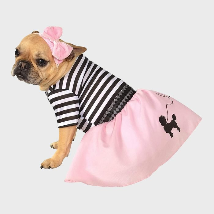 Sock hop dog costume