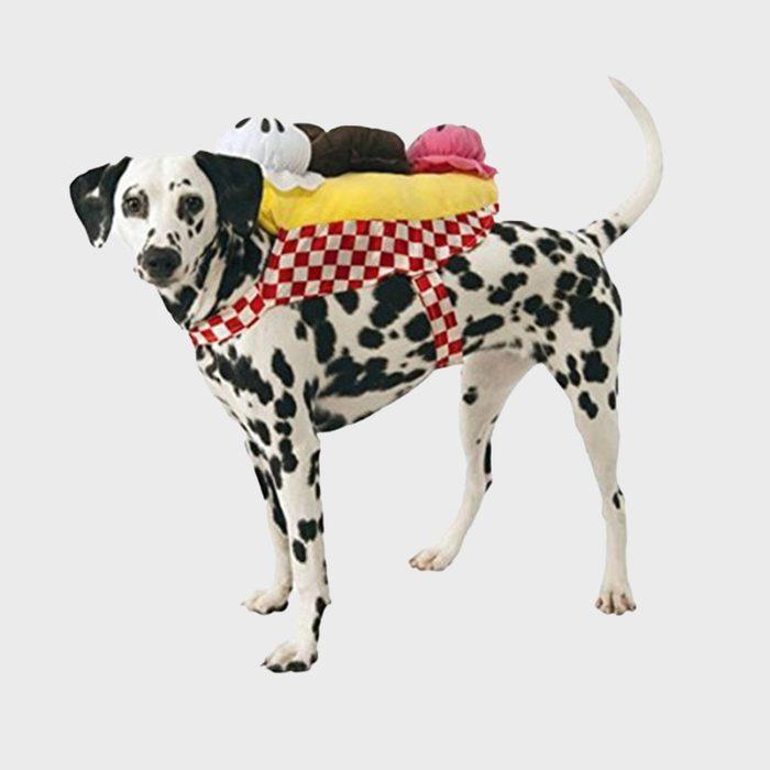 Ice cream sundae dog costume