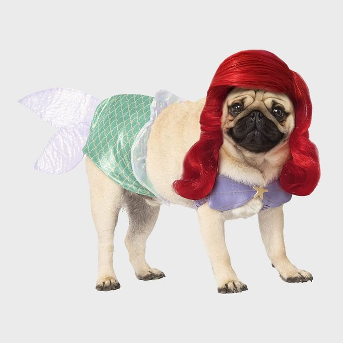 Ariel dog costume