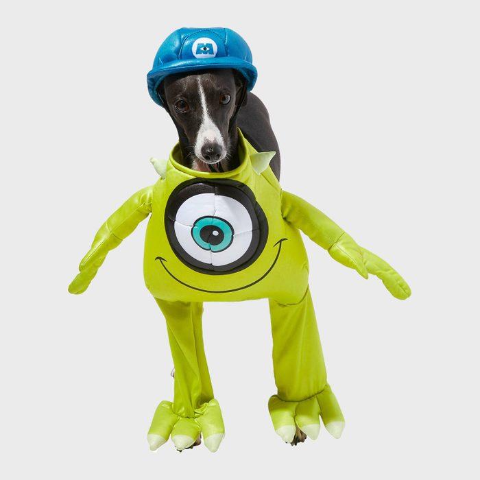 Mike Wazowski dog costume