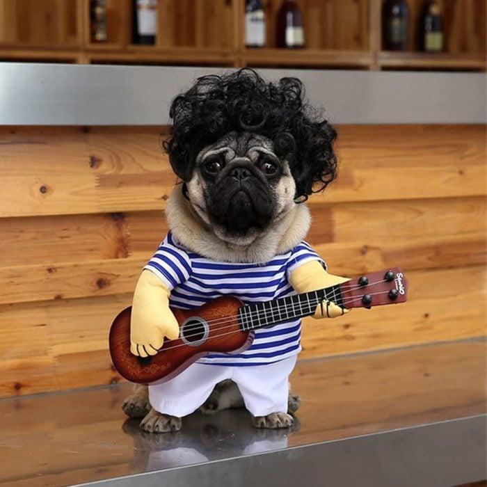 Rocker dog costume