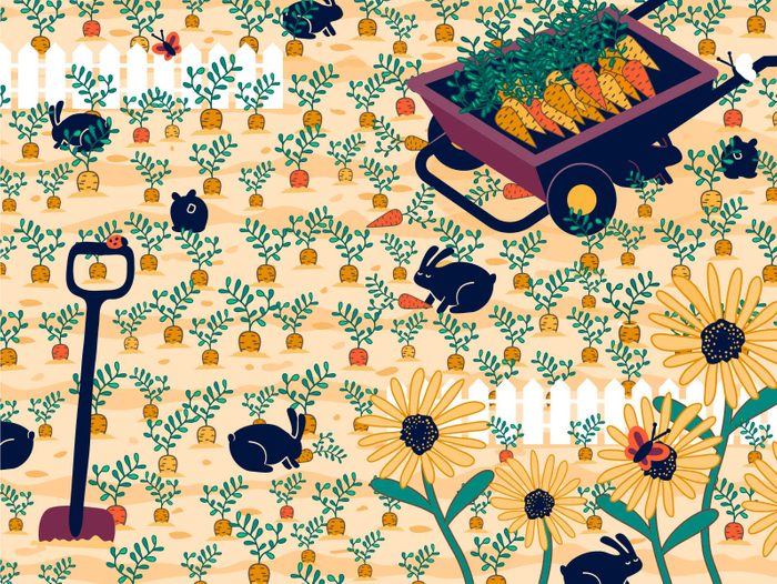 find the ring in the garden visual puzzle