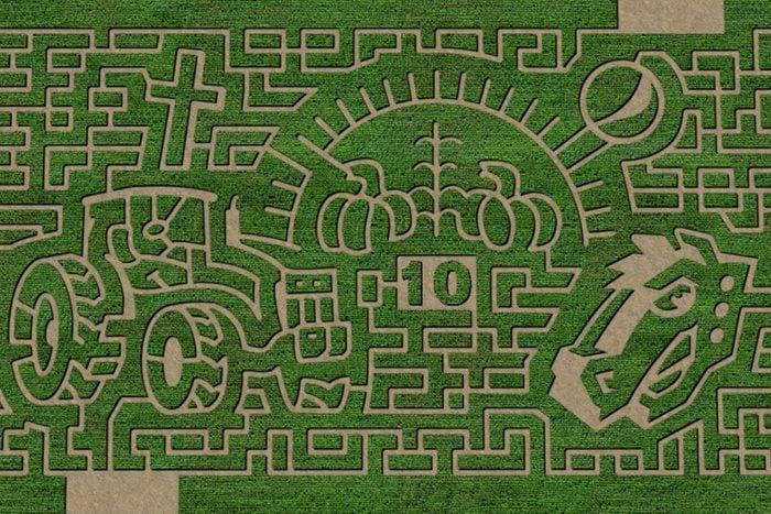 Green Acres Corn Maze In Casper Wyoming