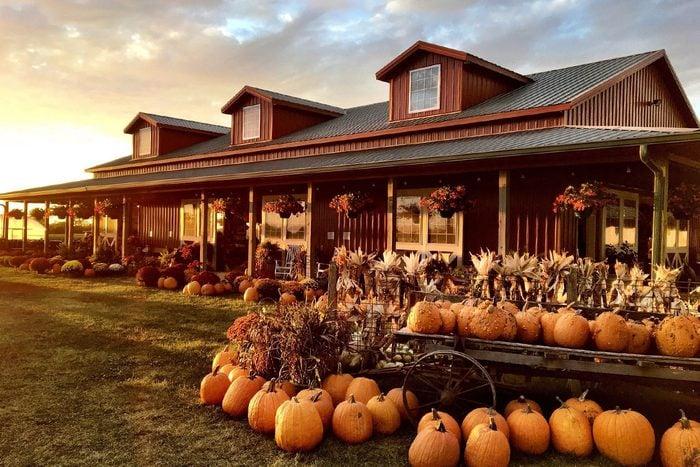 Harvestville Farm In Iowa