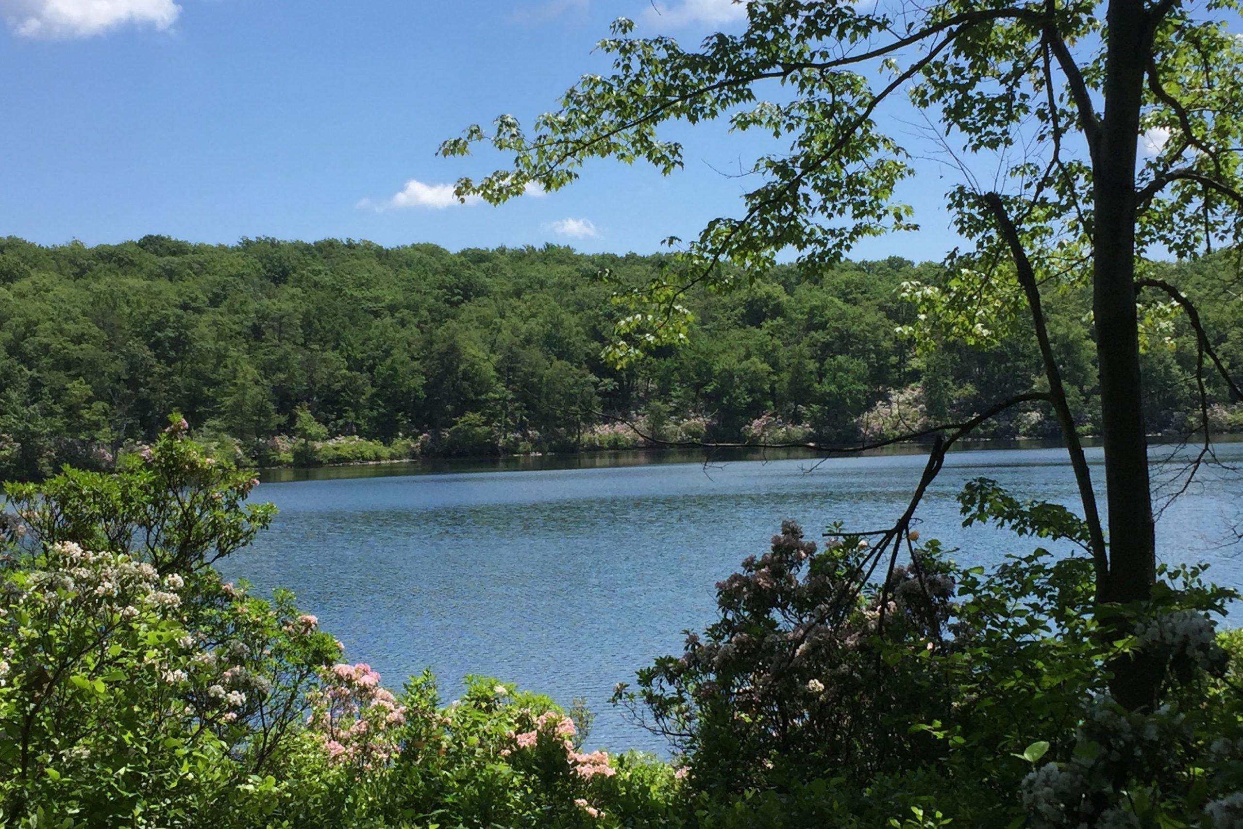 new jersey lake