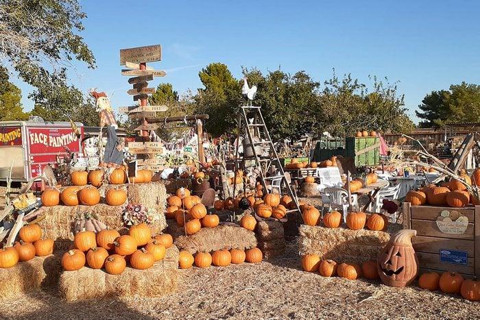 Mckee Ranch Foundation In Las Vegas Nevada