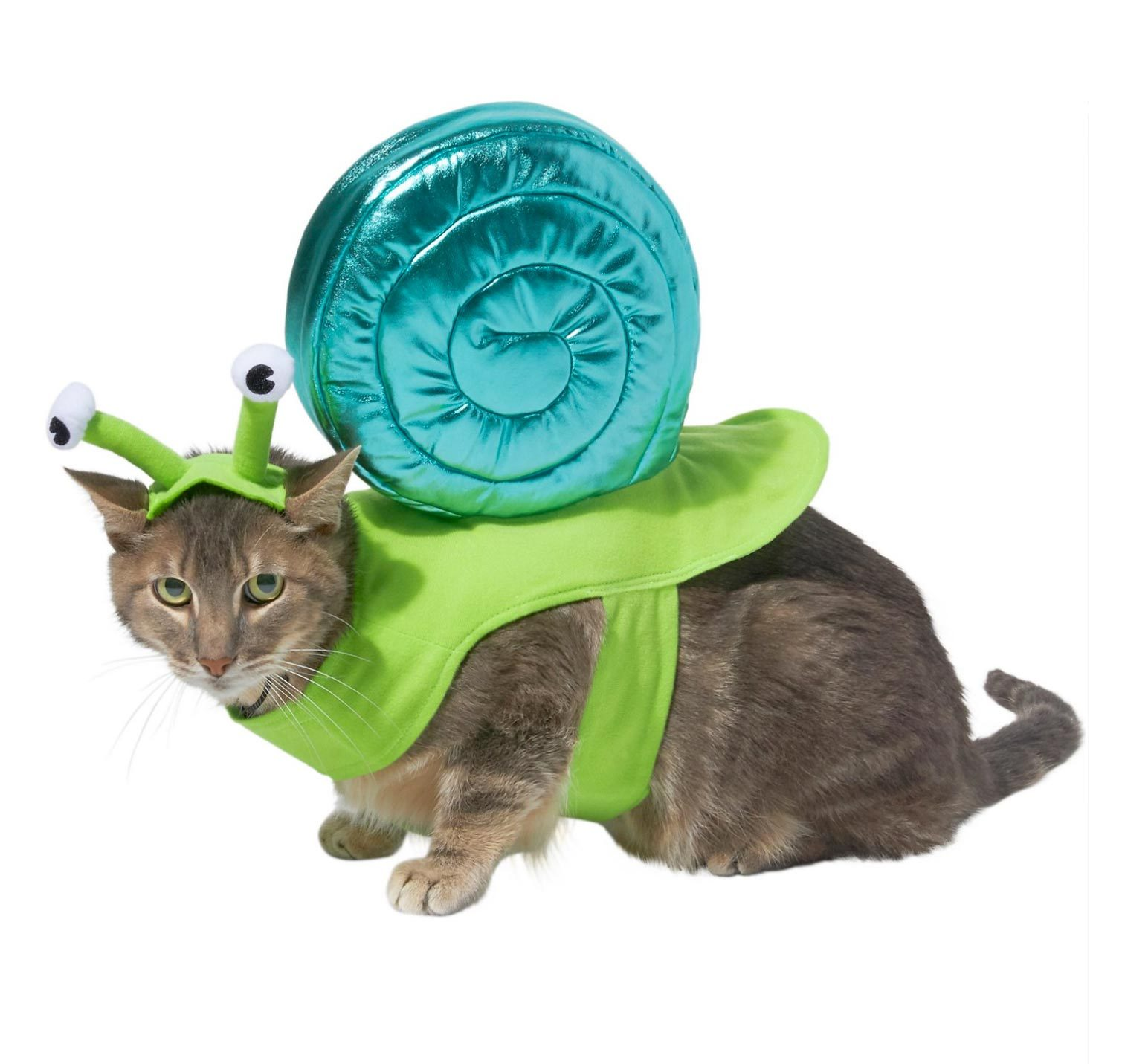snail cat costume