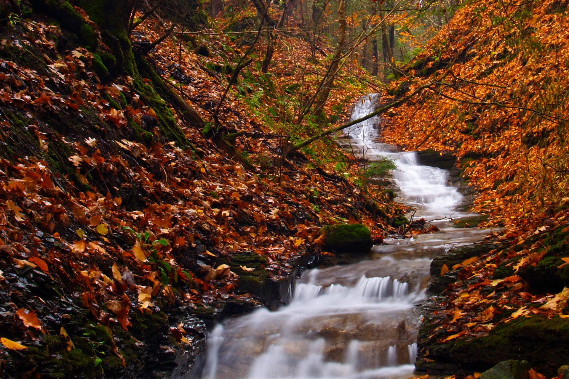 Seasonal autumn waterfall