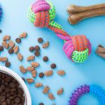 15 Chewy Products with Practically Perfect Reviews