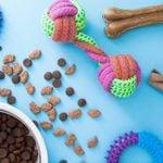 Celebrate National Pet Day with a Sale on 15 Nearly Perfect Pet Products from Chewy