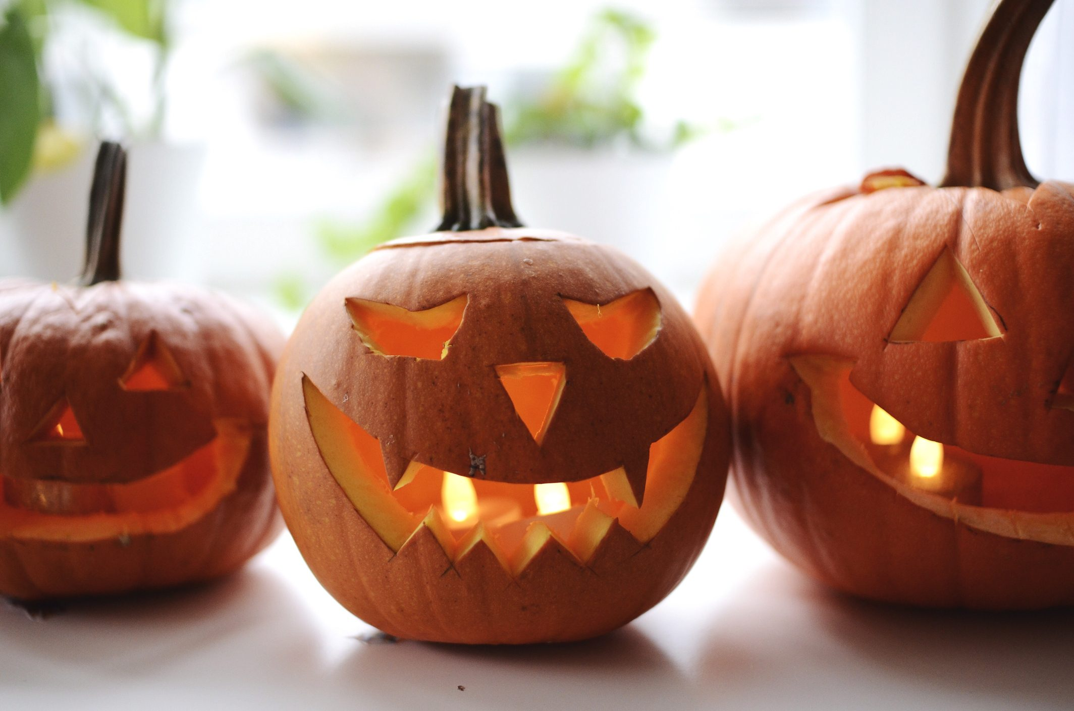 Close-Up Of Jack O Lanterns On Table During Halloween