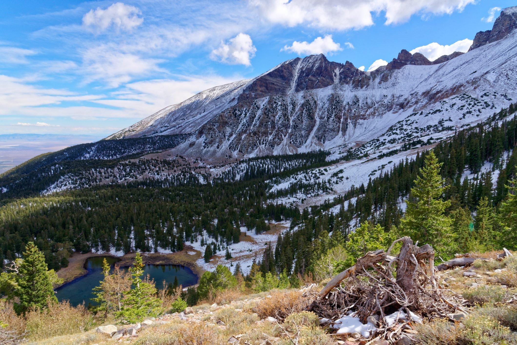 Wheeler Peak Trail, Great Basin National Park