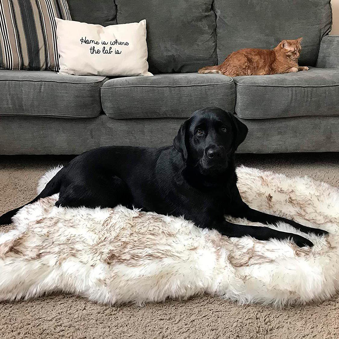 Treat a Dog Faux Fur Memory Foam Orthopedic Dog Bed
