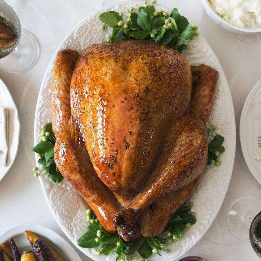 glatt organics turkey