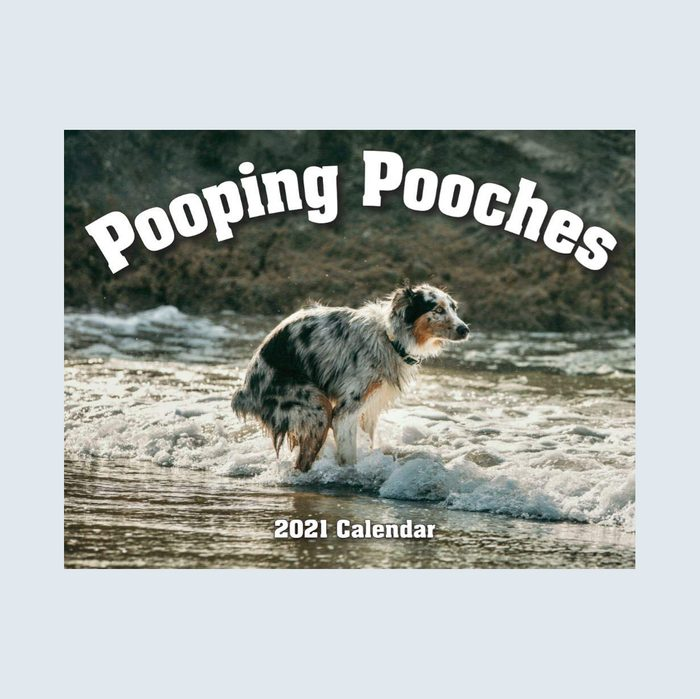 Pooping pooches calendar