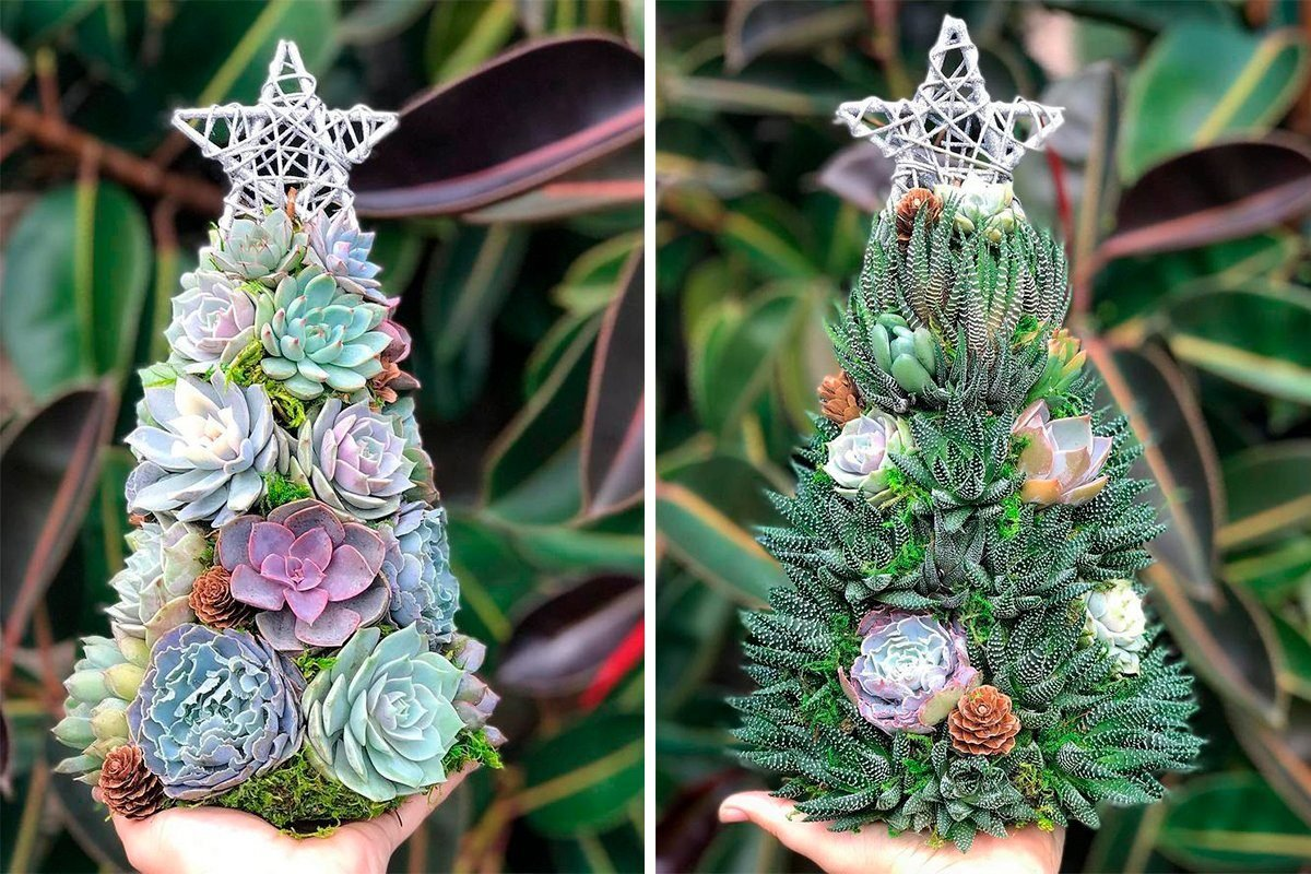 """13"""" Aurora Succulent Tree (made to order)"""
