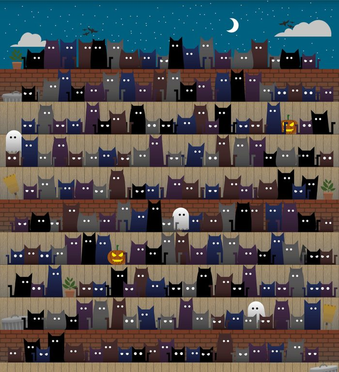 find the witch hat among the cats hidden objects puzzle