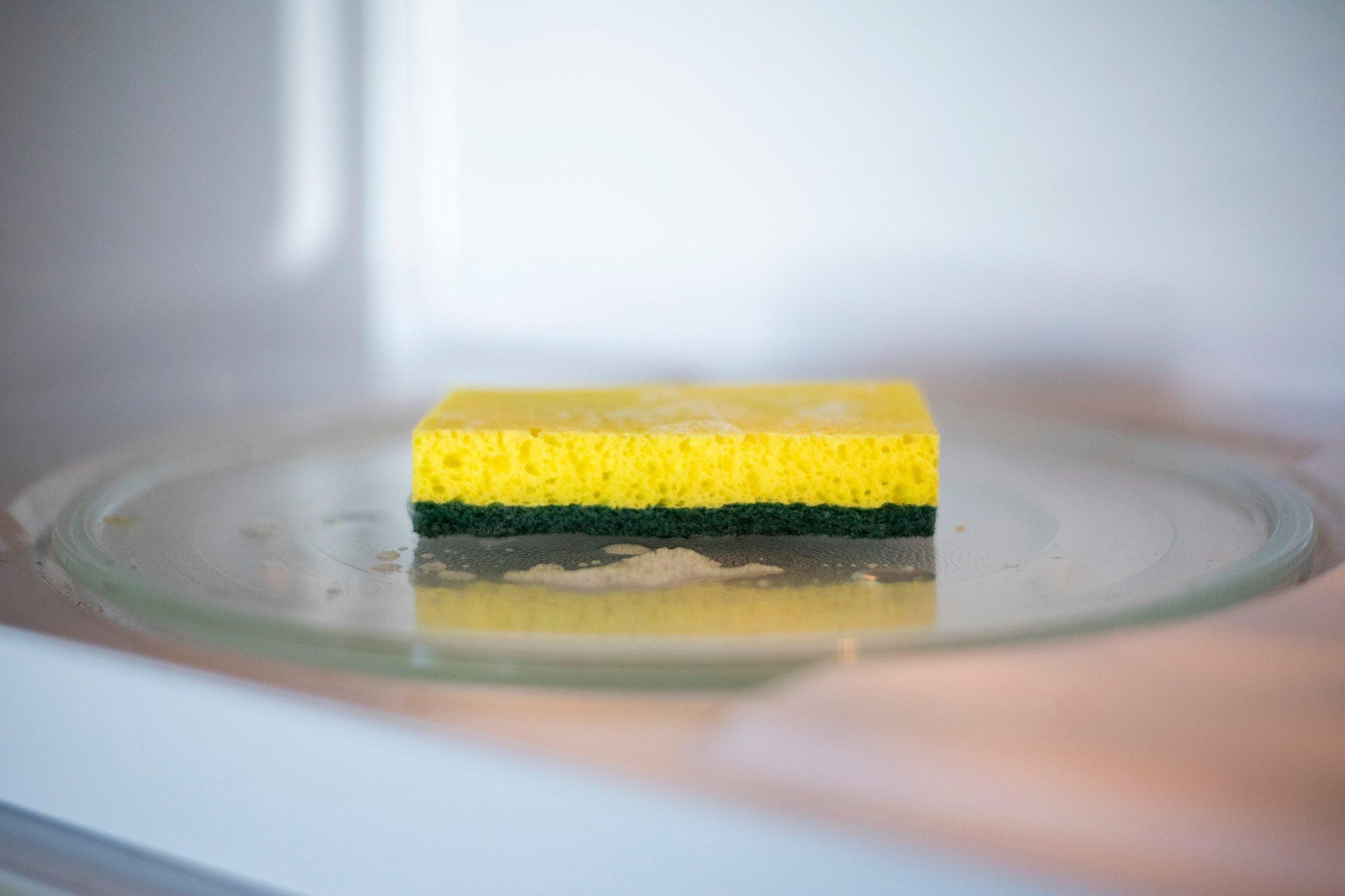 microwaving sponges