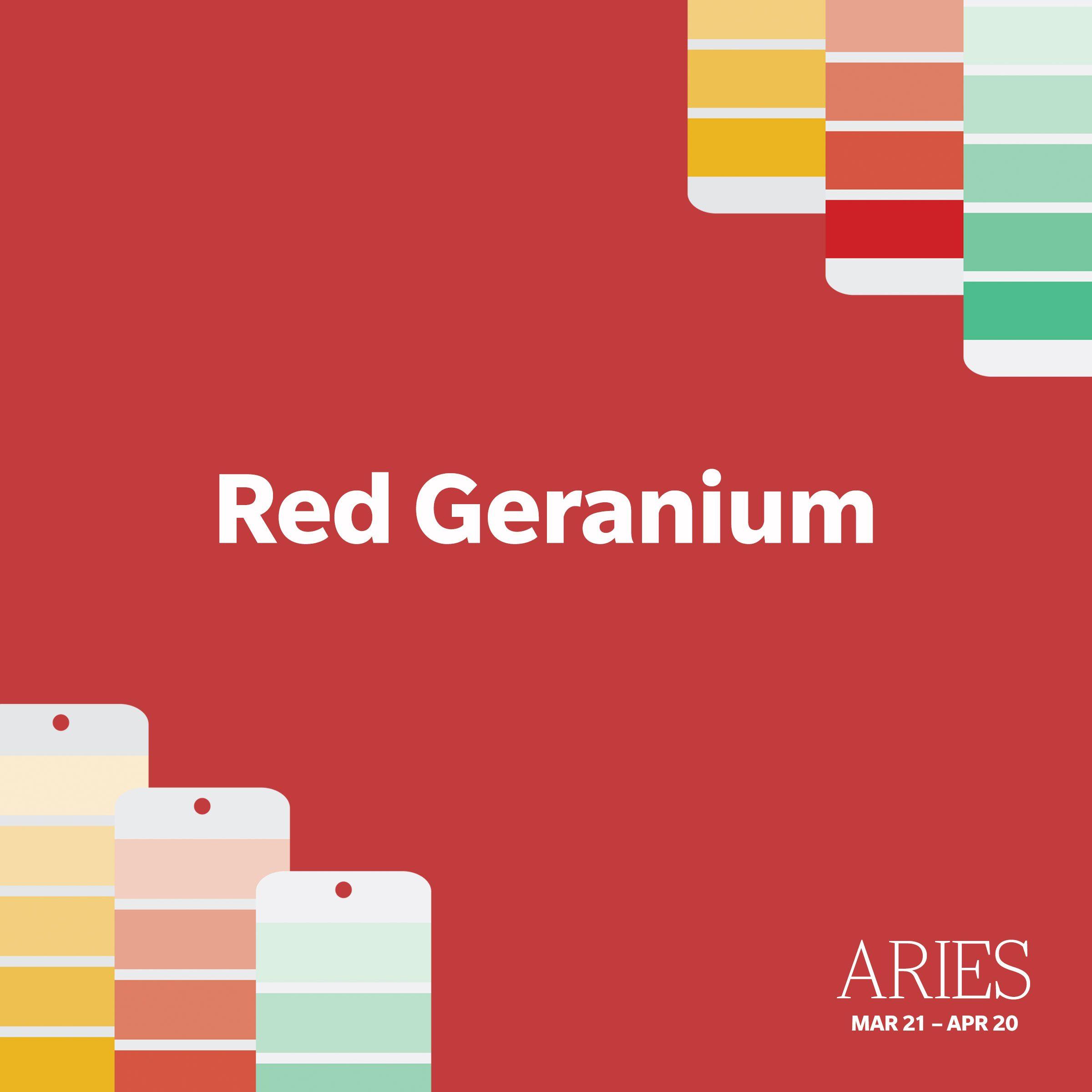 Aries: Red Geranium