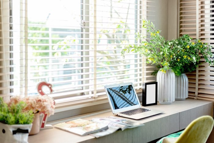 Laptop And Plants On Table At Home
