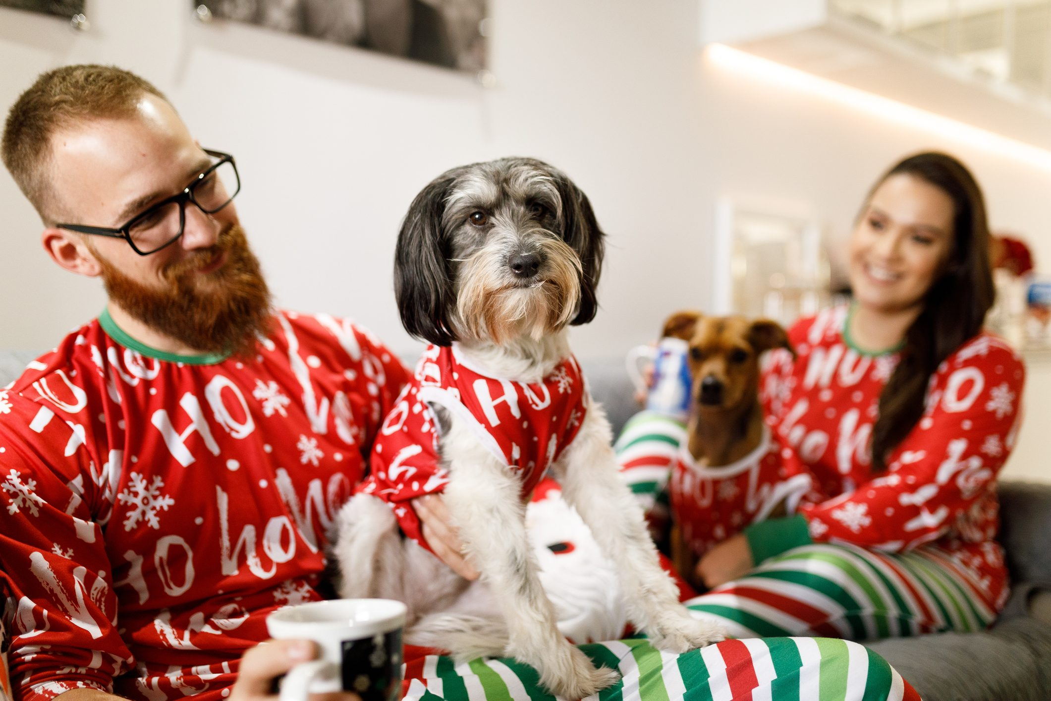 Couple celebrating christmas with dogs on sofa