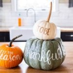 50 Reasons to Be Thankful This Thanksgiving