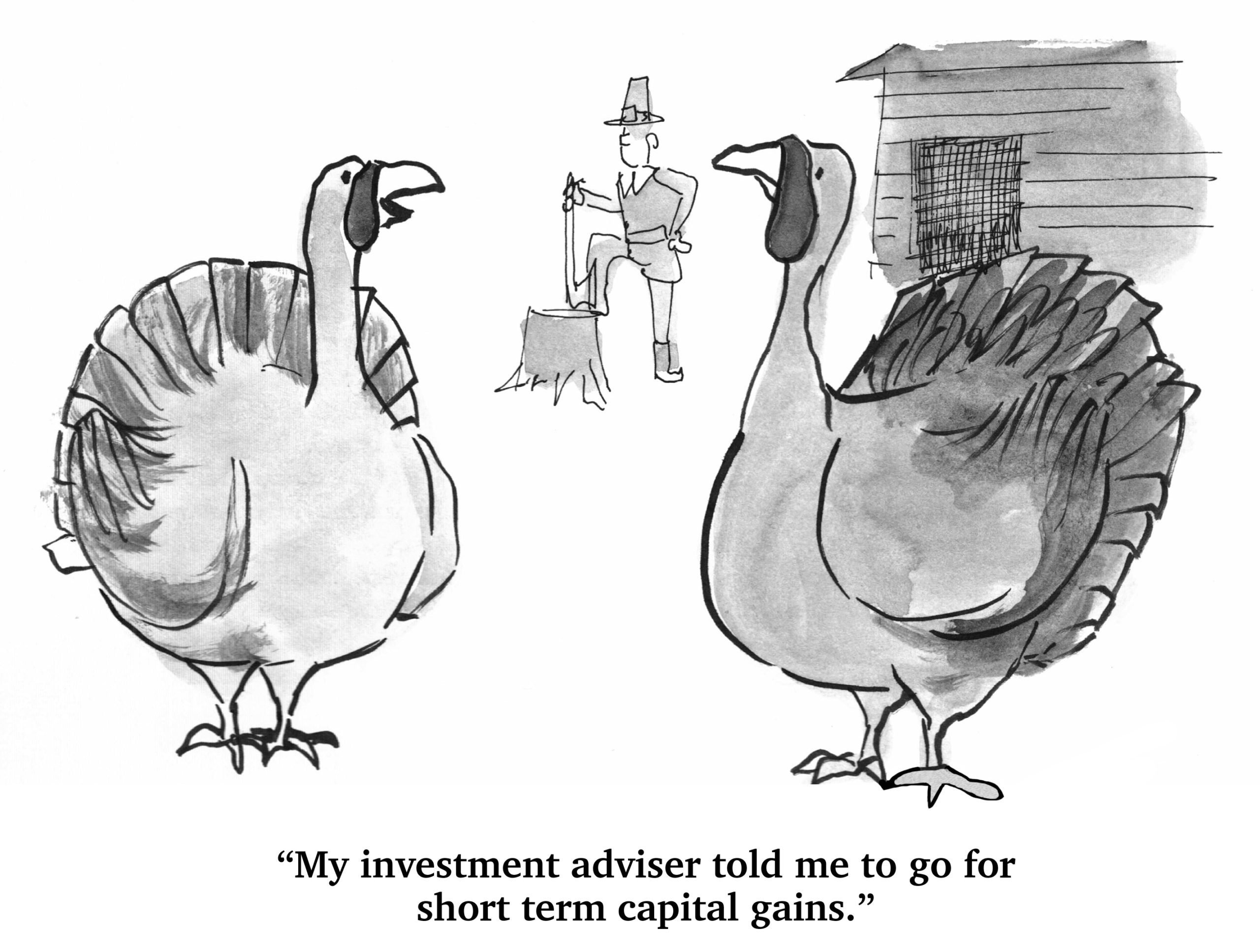 Turkey and Investments - thanksgiving cartoon