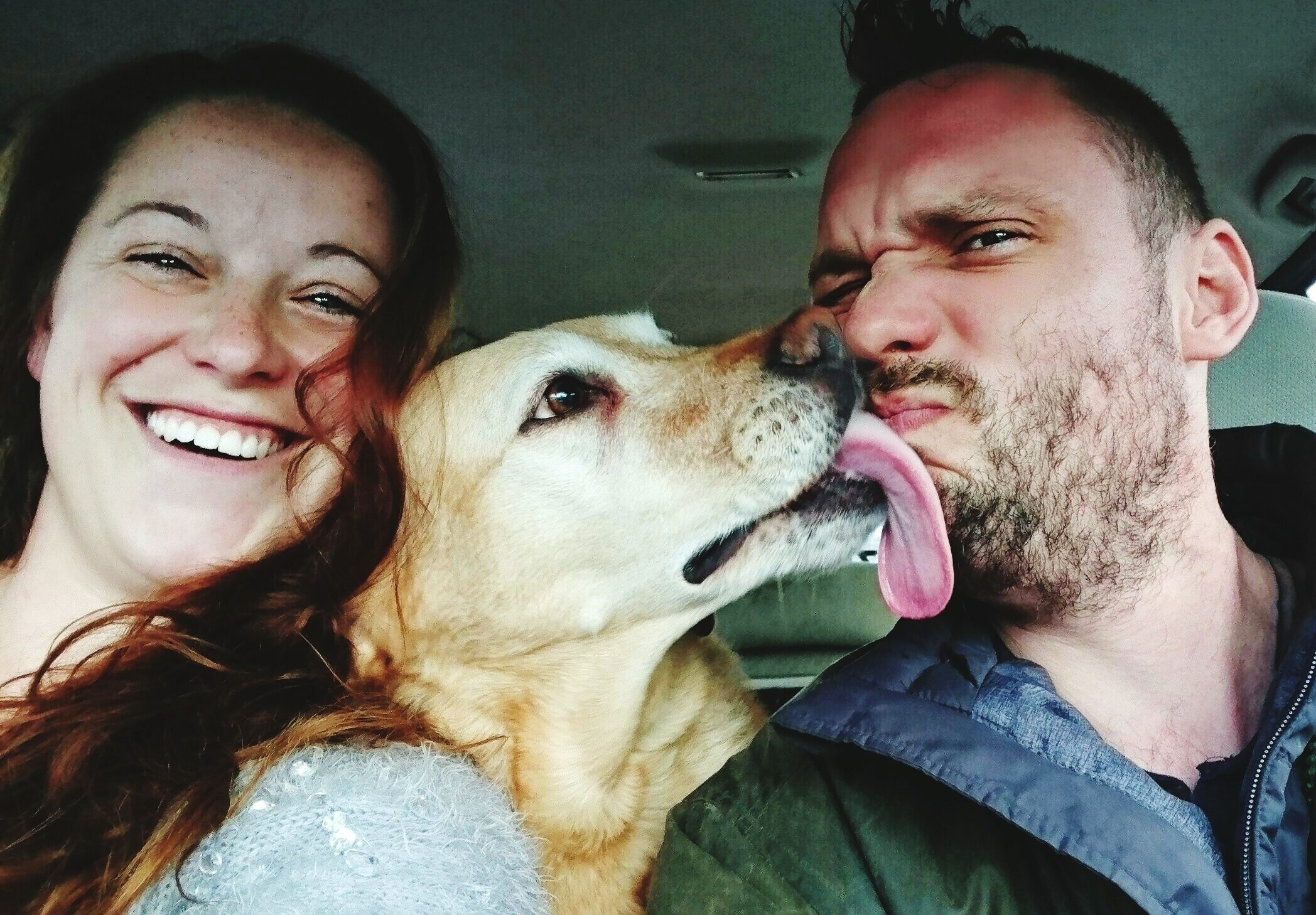 Portrait Of Man And Woman With Dog In Car