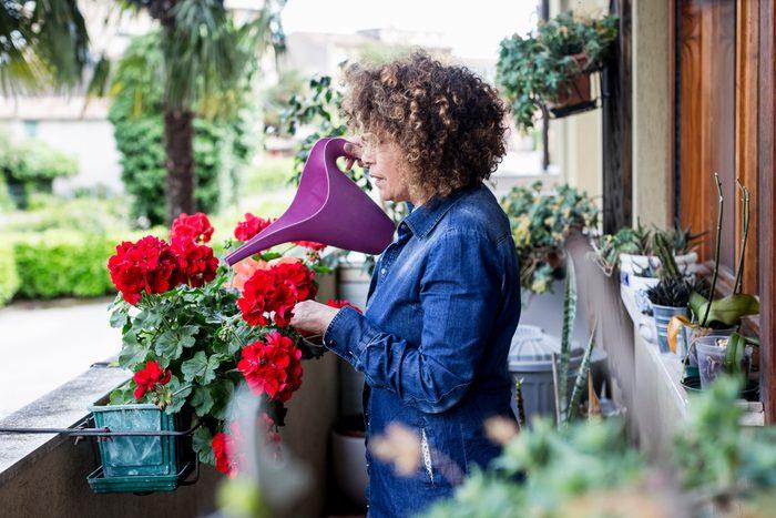 Woman watering flowers on balcony