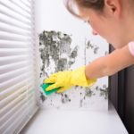 9 Cleaning Solutions to Get Mildew Out of Any Surface