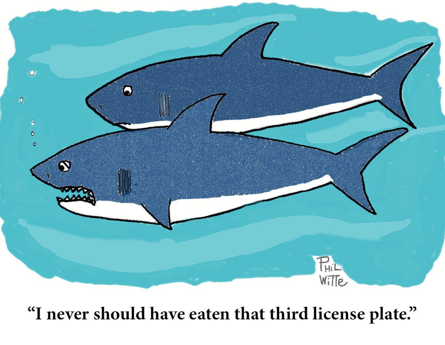 sharks thanksgiving cartoon