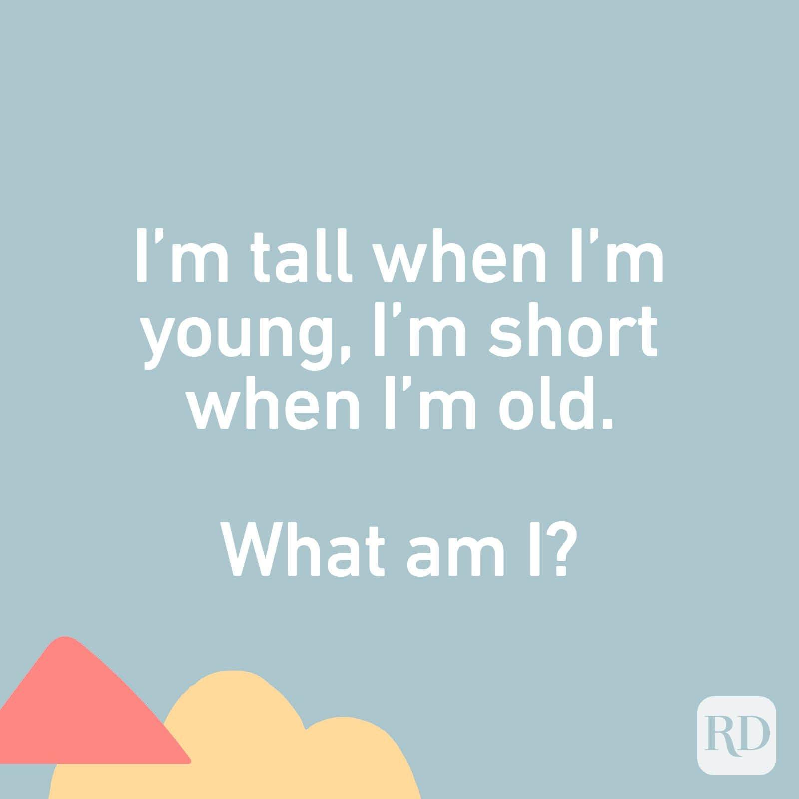 I'm tall when I'm young, I'm short when I'm old. What am I?