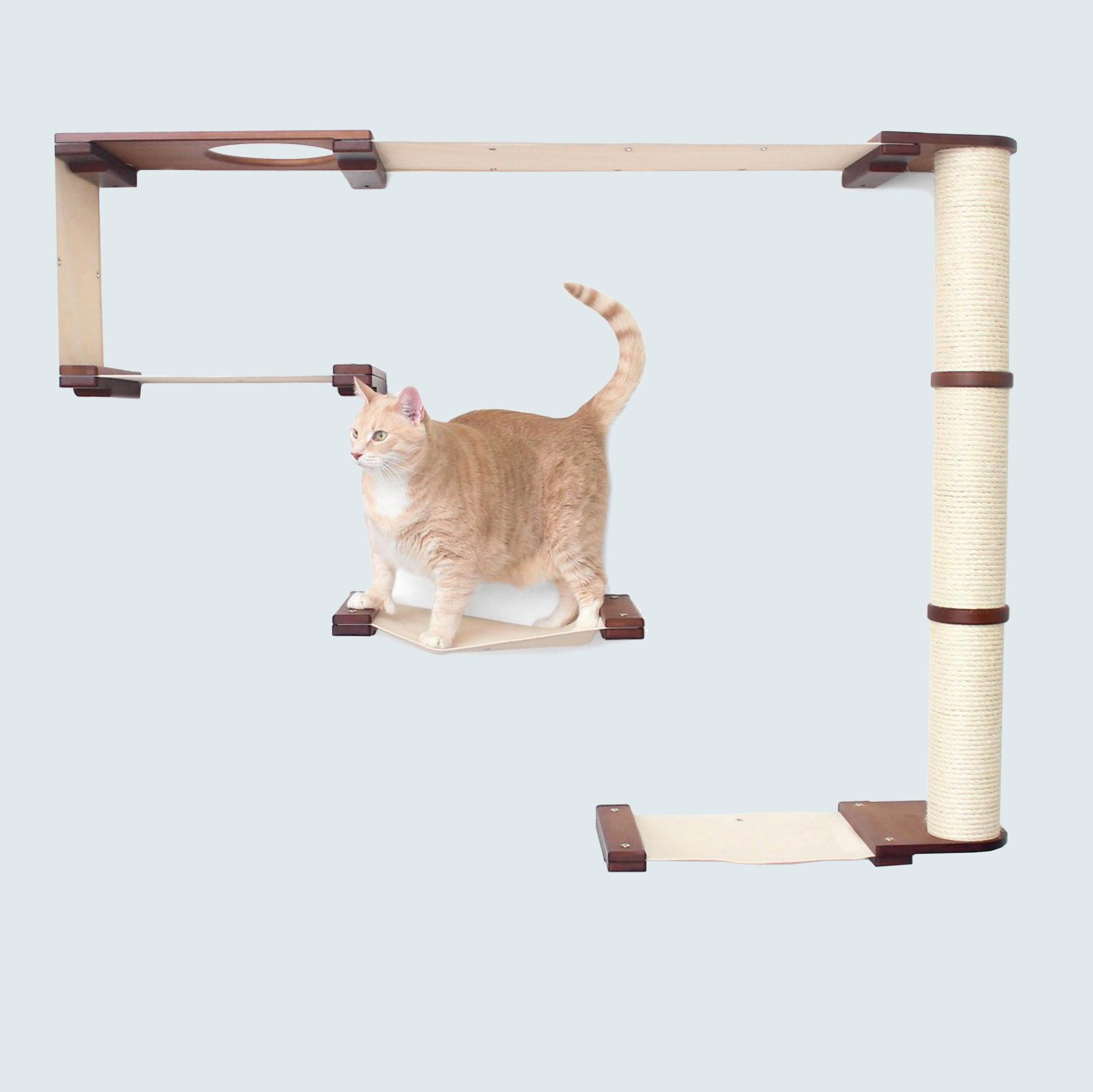 cat tree chewy