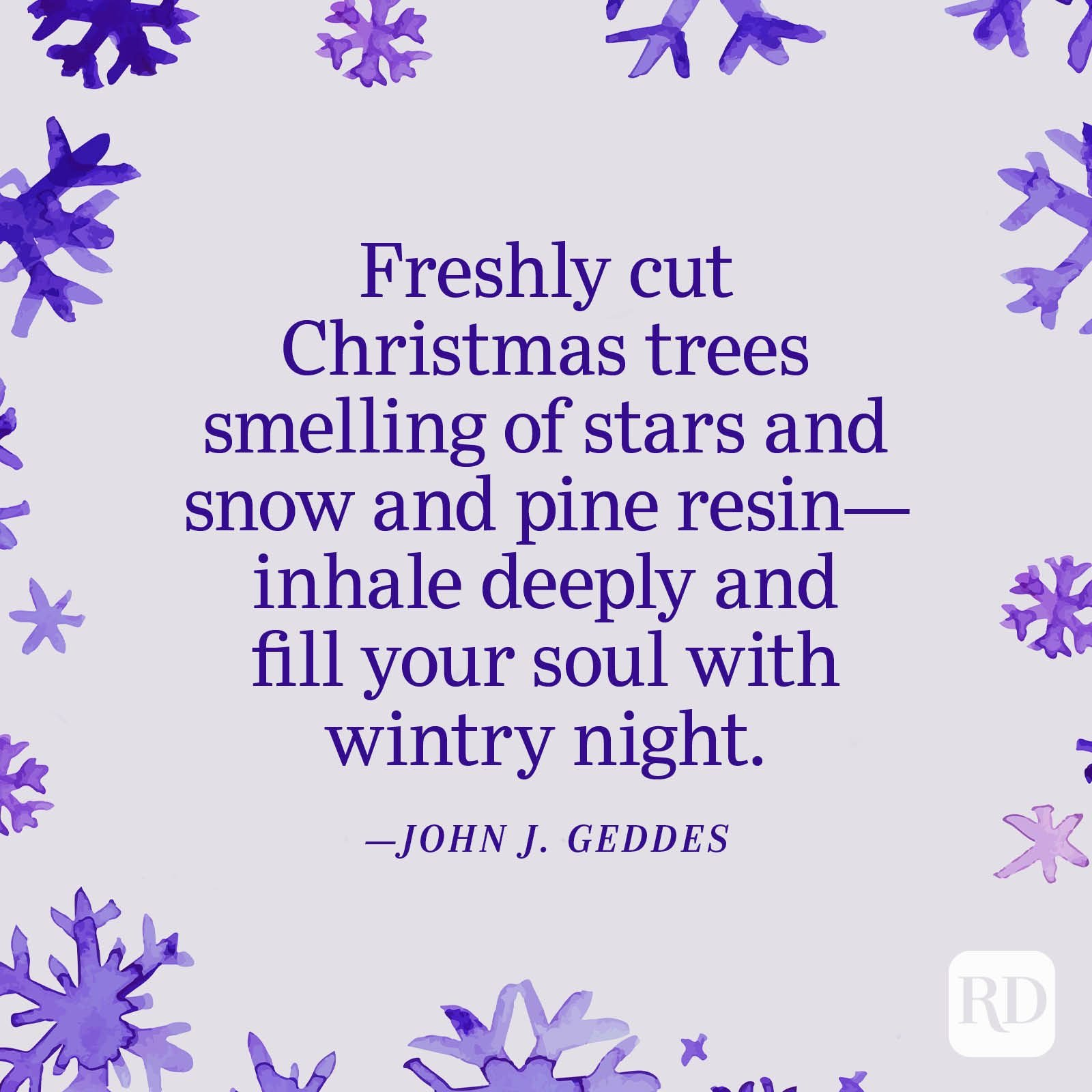 """""""Freshly cut Christmas trees smelling of stars and snow and pine resin—inhale deeply and fill your soul with wintry night."""" —John J. Geddes"""