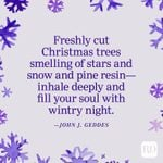 70 Best Christmas Quotes That Capture the Warmth of the Holiday