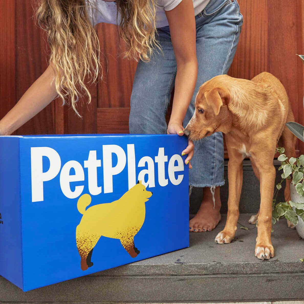 Pet Plate delivery